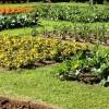 Mostra mercato per l'orto, il frutteto d'autunno e dintorni